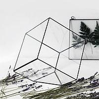 Флорариум Кубик