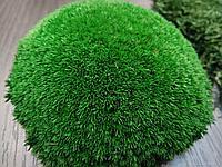 Стабилизированный шарообразный мох