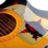 Акустическая гитара Caravan Music HS-4015 SB, фото 4
