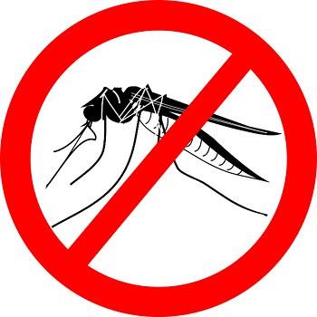 Зачастую маленькие комары могут на удивление сильно раздражать. К счастью, есть современные способы избавиться от них раз и навсегда на весь теплый сезон!