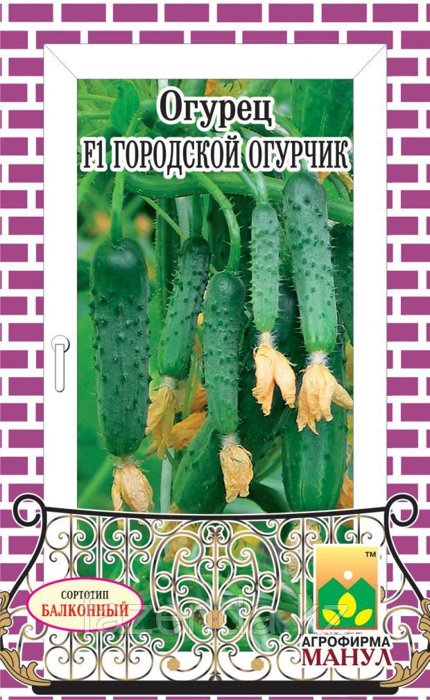 Огурец Городской огурчик F1  10-12шт