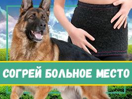 Продукция из собачьей шерсти