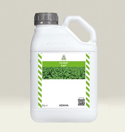 Довсходовый гербицид КАЛИФ®, фото 2