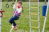 ROMANA Fitness (цепные качели), фото 6