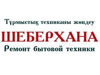 Ремонт кондиционеров Elegance Астана