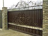 Ворота с автоматикой Came, фото 3