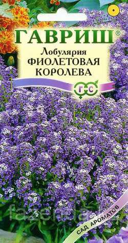 Лобулярия Фиолетовая королева 0,1-0,2гр