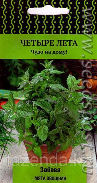 Мята Забава овощная 20шт/Четыре лета/