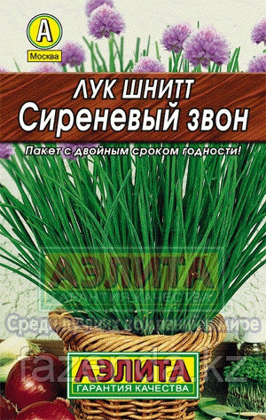 Лук на зелень шнитт Весенний 0,5гр