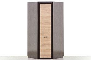 Шкаф для одежды угловой 1Д , коллекции Денвер, Дуб Янтарный, Анрэкс (Беларусь), фото 2