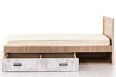 Кровать односпальная (Diesel 90/D2), коллекции Дизель, Дуб Мадура/Энигма, Анрэкс (Беларусь), фото 2