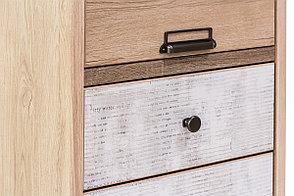 Шкаф пенал 2Д (Diesel 2D1S/D2) коллекции Дизель, Дуб Мадура/Энигма, Анрэкс (Беларусь), фото 3