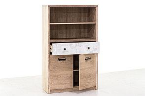 Шкаф для книг 2Д (Diesel 2D1S2NL/D2), коллекции Дизель, Дуб Мадура/Энигма, Анрэкс (Беларусь), фото 2