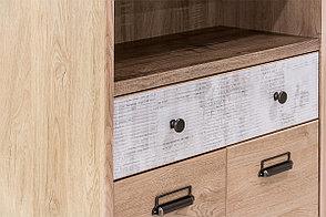 Шкаф для книг 2Д (Diesel 2D1S2NL/D2), коллекции Дизель, Дуб Мадура/Энигма, Анрэкс (Беларусь), фото 3