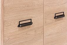 Шкаф для одежды 2Д (Diesel 2DG2S/D2), коллекции Дизель, Дуб Мадура/Энигма, Анрэкс (Беларусь), фото 3
