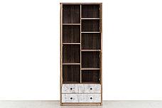 Шкаф для книг 3Д (Diesel 3D2SN/D2) коллекции Дизель, Дуб Мадура/Энигма, Анрэкс (Беларусь), фото 3