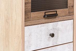 Шкаф витрина 2Д (Diesel 1V1D1S/D2) коллекции Дизель, Дуб Мадура/Энигма, Анрэкс (Беларусь), фото 2