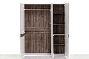 Шкаф для одежды 3Д (Linate 3D/TYP 22 А), коллекции Линате, Белый, Анрэкс (Беларусь), фото 3