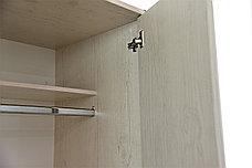 Шкаф для одежды 3Д (Magellan 3DG2S), коллекции Магеллан, Сосна Винтаж, Анрэкс (Беларусь), фото 3