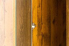 Шкаф для одежды 3Д  (Magellan 3DG2S), коллекции Магеллан, Дуб Саттер, Анрэкс (Беларусь), фото 2