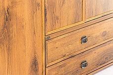 Шкаф для одежды 3Д  (Magellan 3DG2S), коллекции Магеллан, Дуб Саттер, Анрэкс (Беларусь), фото 3