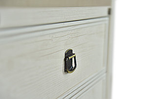 Шкаф стеллаж 2Д (Magellan 2D1S), коллекции Магеллан, Сосна Винтаж, Анрэкс (Беларусь), фото 2