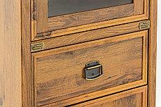 Шкаф витрина 2Д (Magellan 1V1D1S), коллекции Магеллан, Дуб Саттер, Анрэкс (Беларусь), фото 2