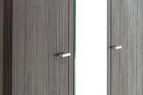 Шкаф для одежды 3Д (Monte 3D2S) коллекции Монте, Дуб Ниагара, Анрэкс (Беларусь), фото 3