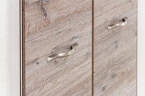 Шкаф пенал 1Д (Olivia 1DG), коллекции Оливия, Дуб Анкона, Анрэкс (Беларусь), фото 3
