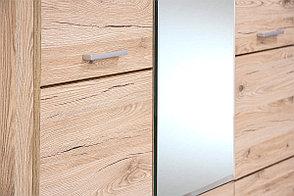 Шкаф для одежды 3Д (Oskar 3D2S), коллекции Оскар, Дуб Санремо, Анрэкс (Беларусь), фото 3