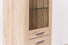 Шкаф витрина 2Д  (Oskar 1D1V), коллекции Оскар, Дуб Санремо, Анрэкс (Беларусь), фото 3