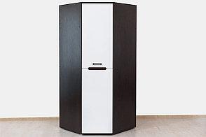 Шкаф для одежды 1Д (1Д), коллекции Вегас, Белый, Горизонт (Россия), фото 2