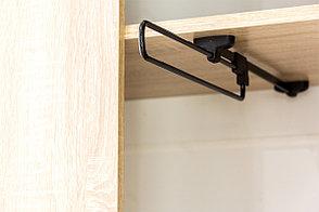 Шкаф для одежды 2Д (2Д), модульной системы Визит 1, Сосна Джексон, СВ Мебель (Россия), фото 3