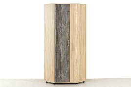 Шкаф для одежды угловой 2Д , модульной системы Визит 1, Сосна Джексон, СВ Мебель (Россия)