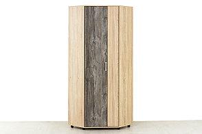 Шкаф для одежды угловой 2Д , модульной системы Визит 1, Сосна Джексон, СВ Мебель (Россия), фото 2
