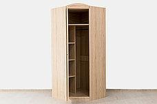 Шкаф для одежды угловой 1Д модульной системы Дисней, Дуб Светлый, MEBEL SERVICE (Украина), фото 3
