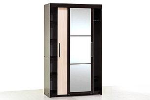 Шкаф-купе  2Д  модульной системы Эдем 2, Дуб Млечный, СВ Мебель (Россия), фото 2