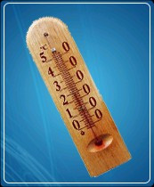 Термометр бытовой сувенирный Д-1, исп.3 (0...+50) ц.д.1, основание-дерево, 140х40мм