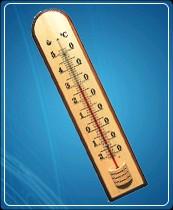 Термометр бытовой сувенирный Д-7 (-20...+50) ц.д.1, основание-дерево, 250х46мм