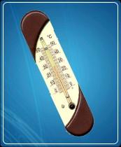 Термометр бытовой сувенирный П-9 (0...+50) ц.д.1, основание-пластмасса, 190х45мм