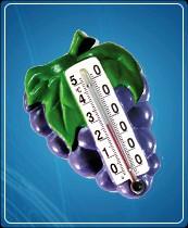 """Термометр бытовой сувенирный """"Виноград"""" (0...+50) ц.д.1, основание-гипс"""