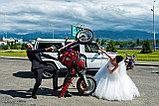 Фото и видео-съемка Свадьба, фото 6