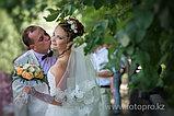 Фото и видео-съемка Свадьба, фото 9