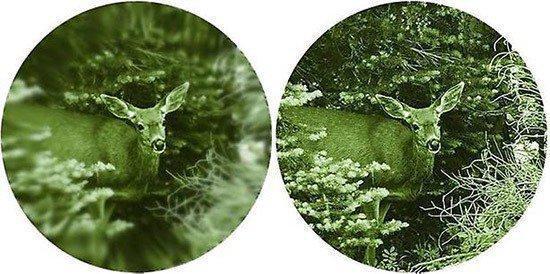"""Слева — изображение, формируемое ЭОПами начального поколения, справа — та же картинка в окуляре ЭОПа первого поколения, которым оснащен монокуляр """"NV Patrol 4х50"""""""