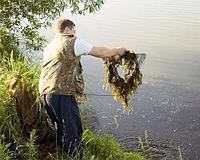 Очистка воды от водорослей Донная коса