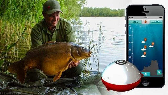 Ведите дневник рыбалок с помощью мобильного приложения