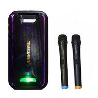 Колонка Bluetooth с аккумулятором Temeisheng TMS-502, фото 1