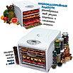 Дегидратор Dream Vitamin DDV-07 полный комплект 6/6, фото 5