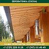 Евровагонка (Сосна) | 12*105/110/125*4000 | Сорт В, фото 2
