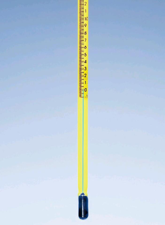 Термометр прецизионный (-1..+101) прямой (орг.нап), ц.д.0,2, полностью погружаемый (MBL)